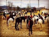 Clase grupal de equitación en Buitrago de Lozoya