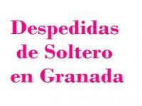 Despedidas de Soltero en Granada Parapente