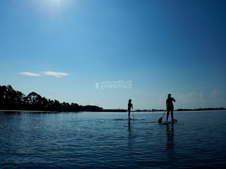 Couple paddle surfing