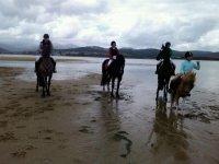 caballos por la playa
