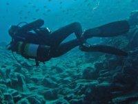 Rozando el fondo bajo el banco de peces
