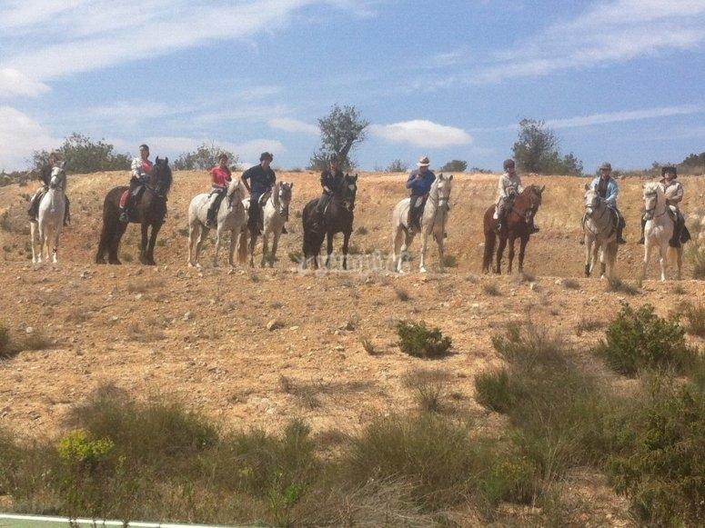 Paseando en grupo a caballo Llíria