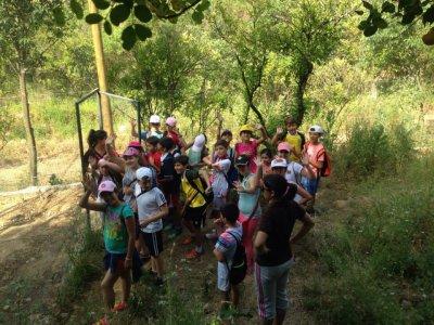 Juegos en la Naturaleza para niños en Córdoba