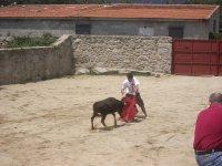 Practicar capeas en Granada