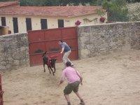 Capeas para despedidas de soltero en Granada