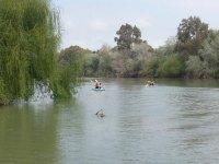 Remando hacia el interior del rio