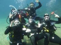 和你的朋友一起潜水