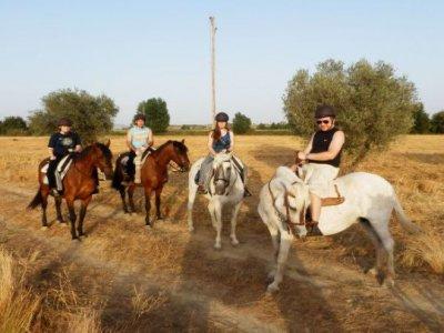 Equitazione nel parco di Cabañeros 3 ore