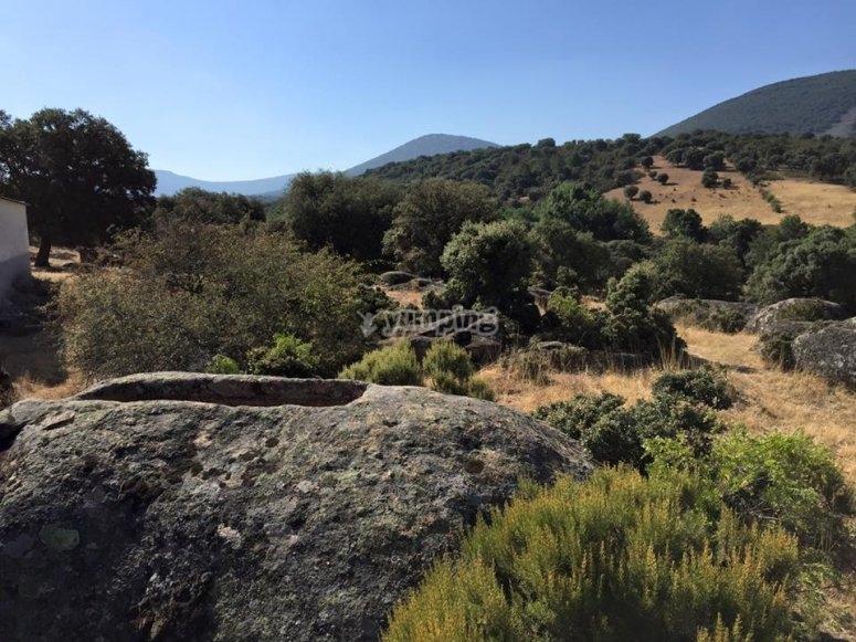Excursion por la naturaleza