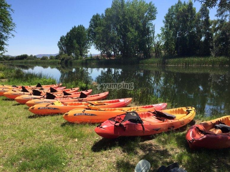 Las piraguas en la ribera del rio