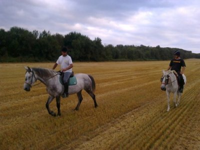 Cavalls de Malavella