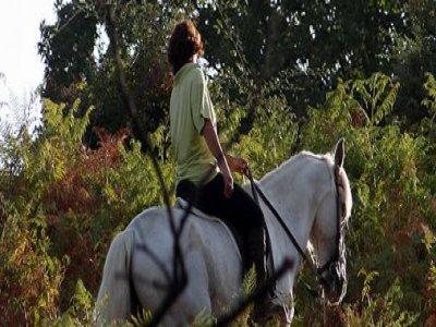 La Sayuela Rutas a Caballo