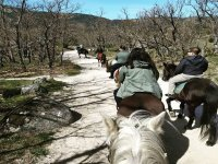 Excursión ecuestre por El Escorial