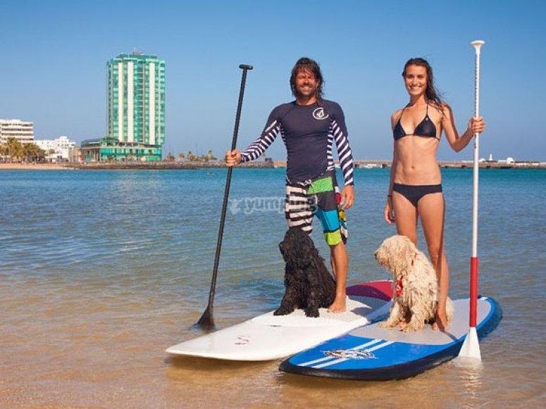 与宠物划桨冲浪