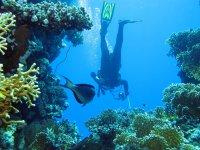 Diving in Mallorca