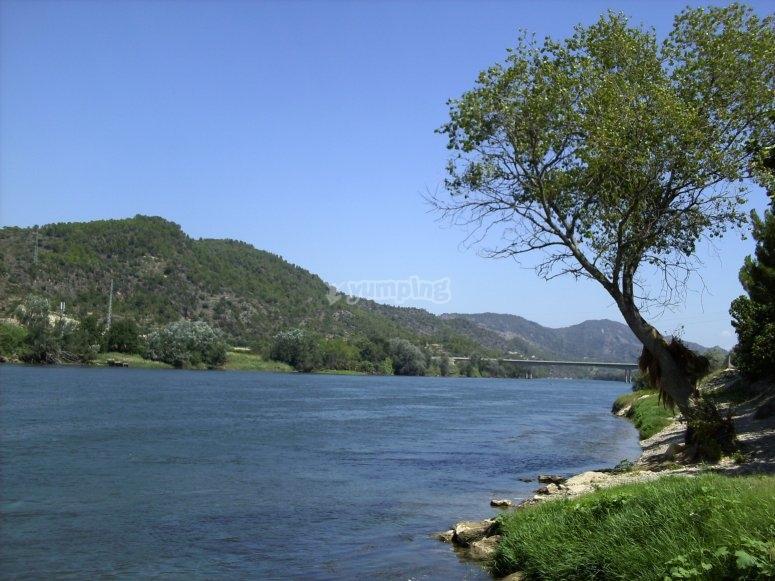 Benifallet的Ebro