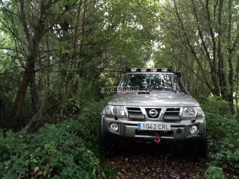 Crossing the forest by 4x4