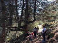 Paseando por los senderos de la Sierra de las Nieves