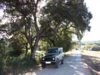 Conoce la Sierra de las Nieves con nuestras rutas en 4x4