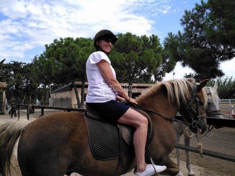 Percorso del cavallo