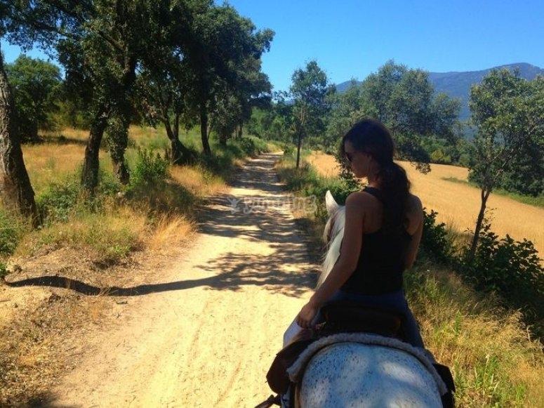 女孩骑着一匹白马