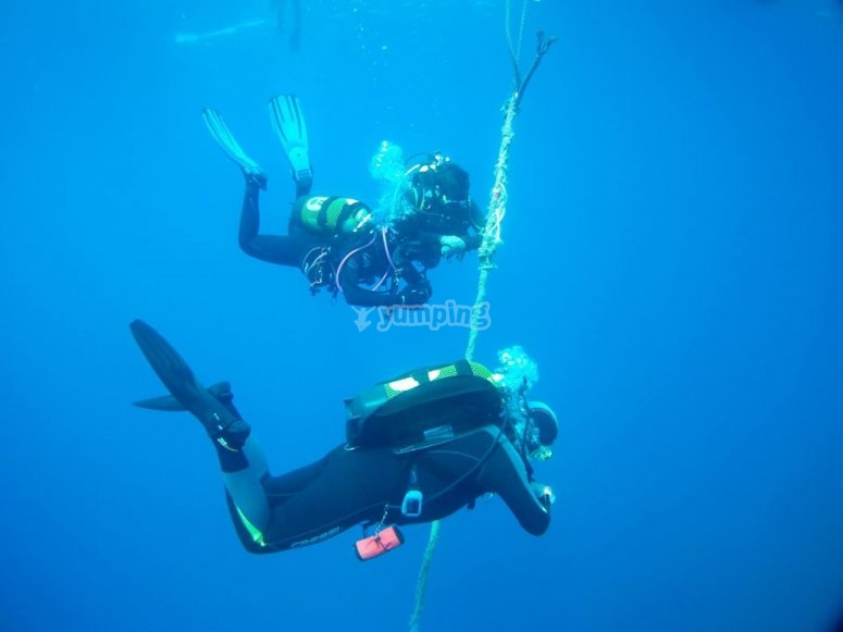 Diving experience
