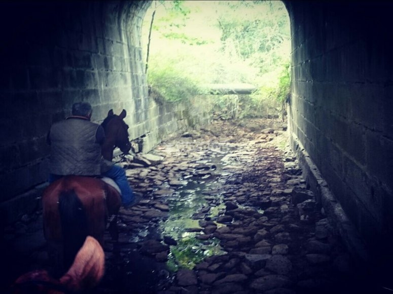 Crossing the tunnel at horseback