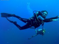 Submarinista Mola Mola Dive
