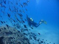 Inmersiones en mar abierto