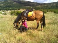 1h horseriding route in Bustarviejo