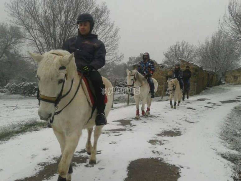 Horseride route in the snow