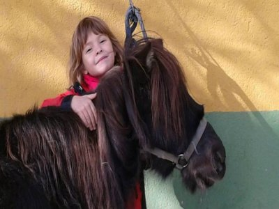 English horse riding camp during Christmas