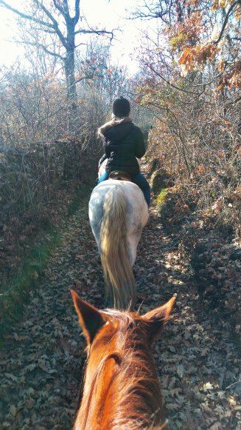 res_o-35033-rutas-a-caballo_de_alejandro-gonzalez-gonzalez_14827748497941.jpeg
