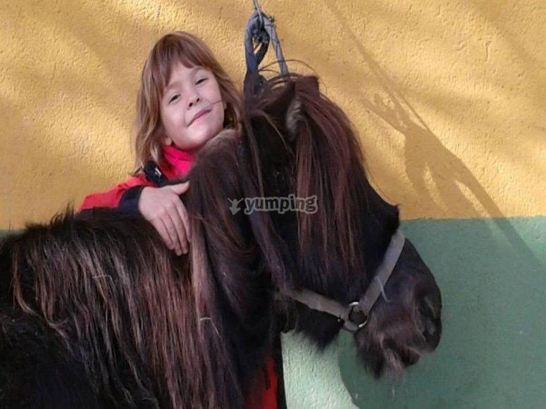 Abbracciare il cavallo