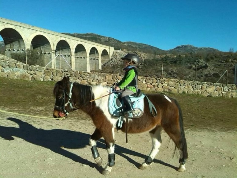 Cavalcare in pony