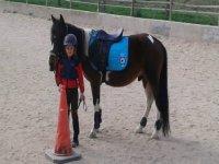 Con il pony in pista