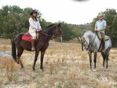 Horse riding route, Torrelaguna, 2h + free class