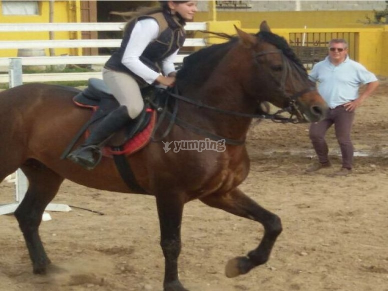 Practicing on the horse