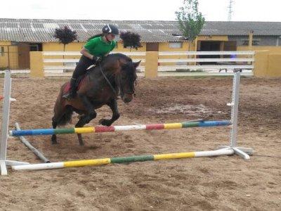 Cumpleaños con caballos en Valladolid con merienda