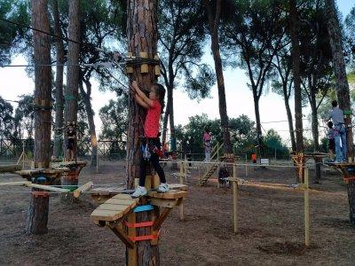 Parque en los árboles Bollullos colegios TB