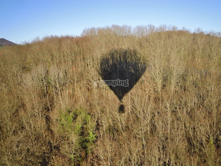 Sombra del globo