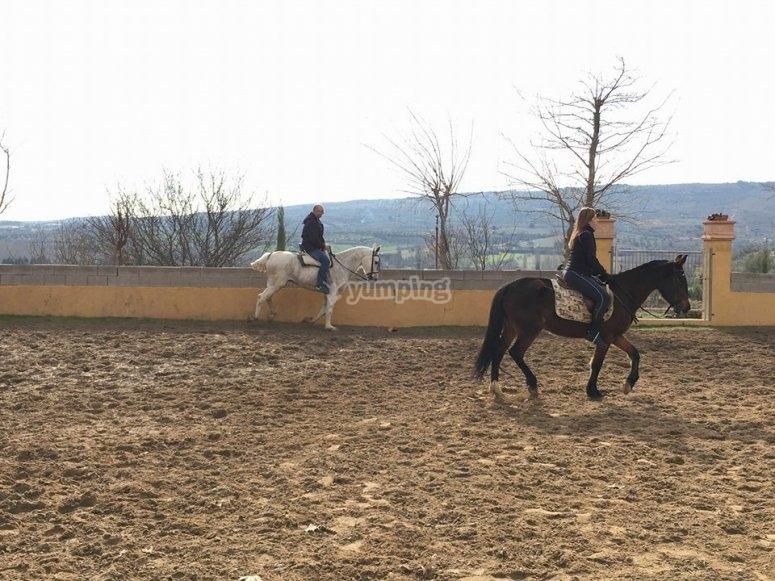 Equitazione in pista