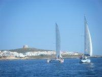 梅诺卡双体船划船巴利阿里队伍建设