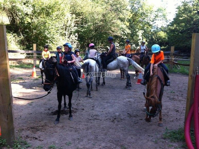 Cavalli a cavallo