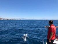 Delfín saltando junto al catamarán