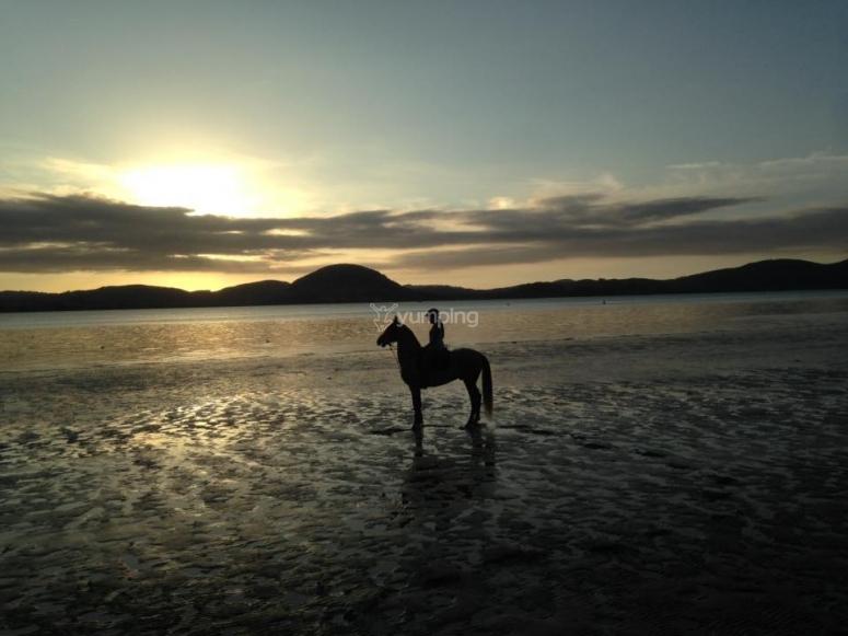 Atardecer a caballo