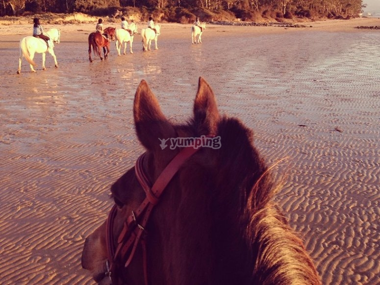 Ruta a caballo en la playa