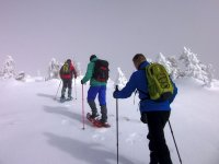 Raquetas de nieve en busca de paisajes nordicos