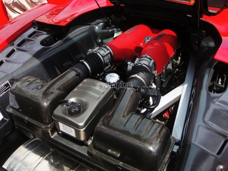 Motor del deportivo