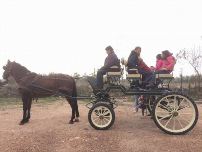 马车在Daimiel骑行3个小时